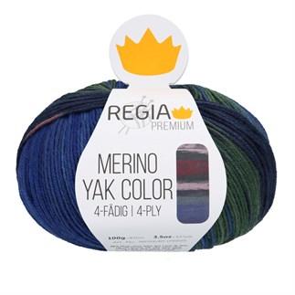 Regia Premium Merino Yak Color